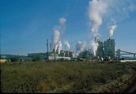 Pulpmill - General - Pulp Mill and surrounding landscape