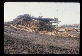 Prince George (P.G.) Sawmill - General - Trim blocks (lilypads)