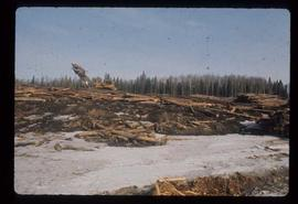 Prince George (P.G.) Sawmill - General - Loader