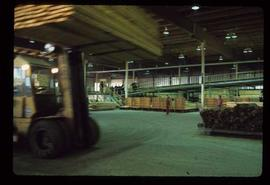 Prince George (P.G.) Sawmill - General - Dry chain in planer