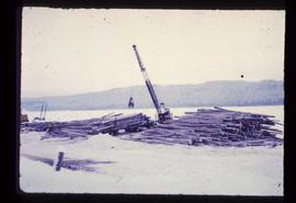 Shelley Sawmill - General - Taking logs from river