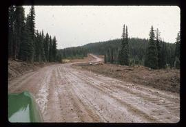 Woods Division - Roads - Nose Bay Road (Houston) near two lakes (FBCPE #26)