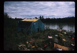 Woods Division - Timbercruising - Tenting during field trip