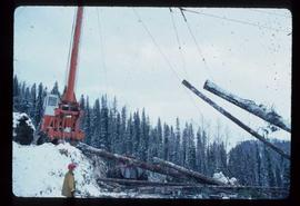 Woods Division - High Lead Logging - Crane lifting logs