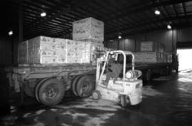 Workplace Album - Forklift Loading Asbestos