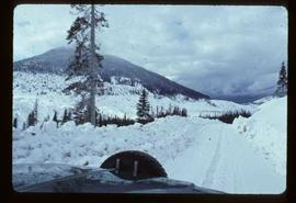 Woods Division - High Lead Logging - View of road in winter