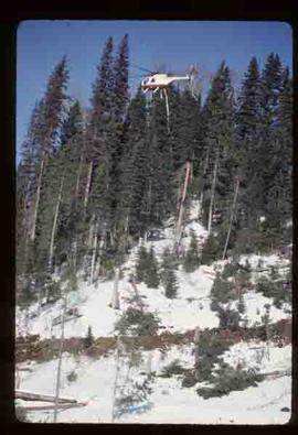 Woods Division - Helicopter Logging - Bowron area helicopter logging trial run