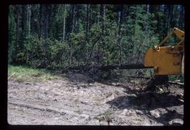Woods Division - Mechanical Falling - Unique lead mounted on log loader for limbing and bucking logs
