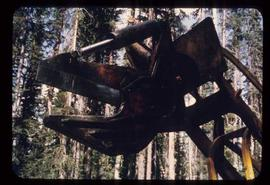 Woods Division - Mechanical Falling - Shear