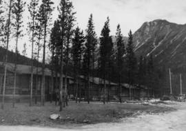 Early Pan-Abode Houses, Cassiar Townsite