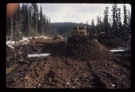 Woods Division - Bulldozers - Road building