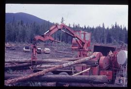 Woods Division - Chipper / Harvester - Morbark chiparvestor