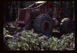 Reforestation - Willow Canyon Nursery - Skidder