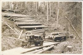 Loading logs on truck from skidway - logs up to 32 feet in length