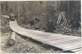 Logging - Giscome B.C. Plank truck road - also road under construction showing sills and cribbing