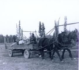 Travel to Anahim Lake, 1952 - Two horses pulling a wagon with passengers and a driver
