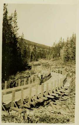 Unidentified man standing on a newly constructed wooden roadway in the forest