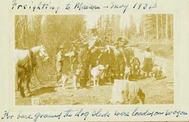 Freighting (?) to Manson [Creek] - for bare ground the dog sleds were loaded on wagon