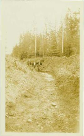 Three unidentified men standing in an old ditch