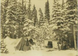 Camp set up within a snowy forested landscape