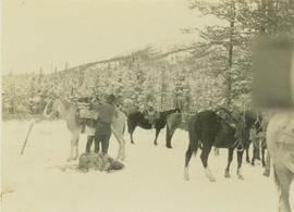 Unidentified man loading up a pack horse