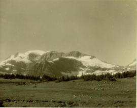 Mt. Petrie landscape located above Camp No.8