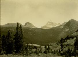 Forested valley surrounding Dimsdale Lakes rising to snow capped peaks of Mt. Ida