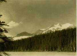 Lower Dimsdale Lake within the forest rising to snow capped peaks of Mt. Petrie