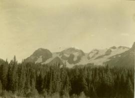 Peaks of the Three Sisters rising above the tree tops