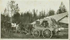 Stage coach on the Cariboo Trail
