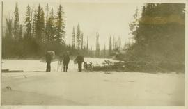 Three men with backpacks, snowshoes and packdogs stand in a snowy forest clearing