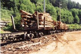 Canfor Logging Railway