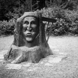 Carving in Little Qualicum Falls Park on Alberni Highway
