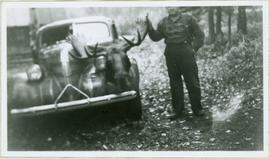 Ned Standing with Moose Head on Hood of Car