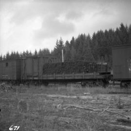 C.N. line at Deerholme Junction on Vancouver Island