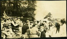 Large Picnic Gathering