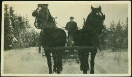 Bob Baxter Driving Team of Horses at Mud River