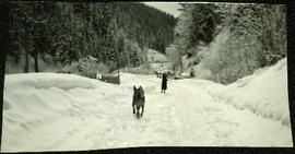 Dog running towards an unidentified woman on a snowy road