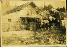 Horses & Sled at Alexandria Road House