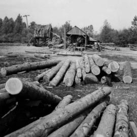 Small sawmill in South Westminster, Surrey