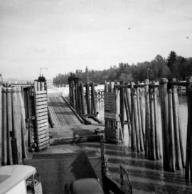 Albion Ferry approaching slip at Fort Langley, B.C.