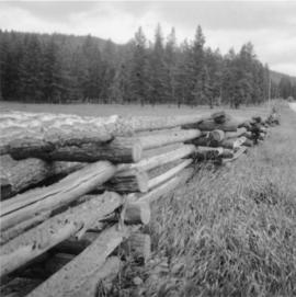 Log fence near Soda Creek