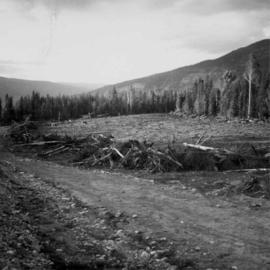 Land clearance between Monashee Pass and Lumby