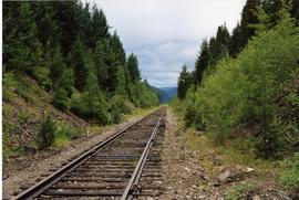 Trackage near Manning Park