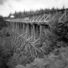 Road trestle bridge for cars on Vancouver Island