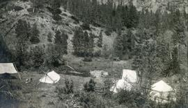 Camp at Fish Dam, Christina Creek, in July