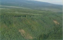 Aerial views (E 15 Mile to Rock Ck) - 19