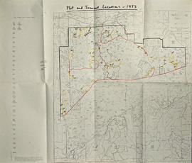 Plot and Transect Locations, 1993