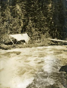 Camp on John Brown Creek