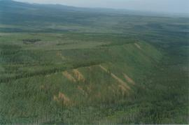 Aerial views (E 15 Mile to Rock Ck) - 14
